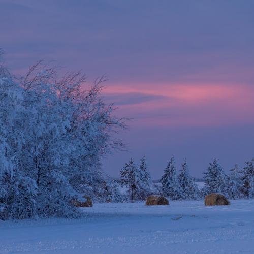 A Christmas Card Sunset