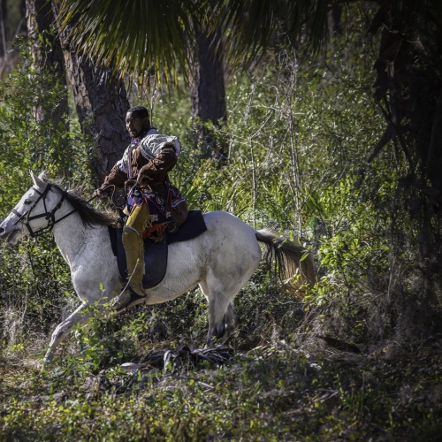 1st Place Winner: Dade Battlefield Reenactment