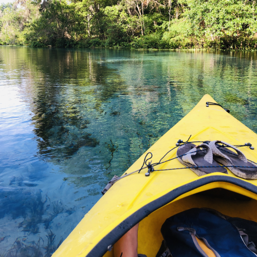 Kayaking the wild