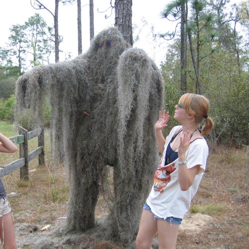 Moss Monster 2