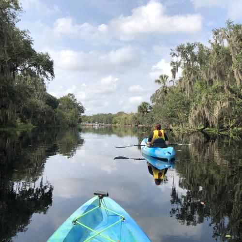 Paddle Blue Spring
