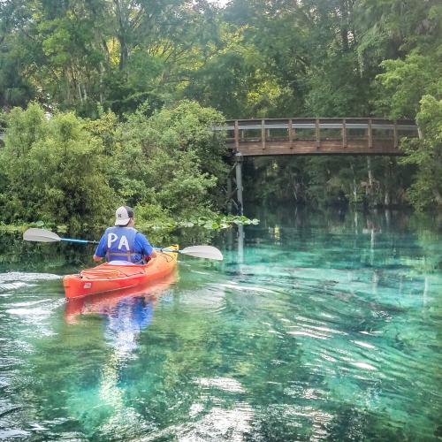 Florida's Emerald Gems