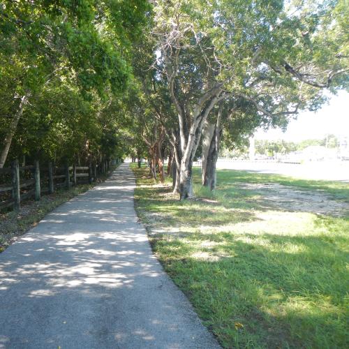 Bike Trail all to myself