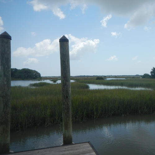 Marshes of St. Augustine Florida