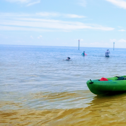 Kayaks at a sand bar.