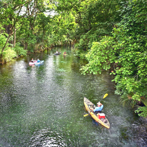 Kayaking at Silver Springs State Park