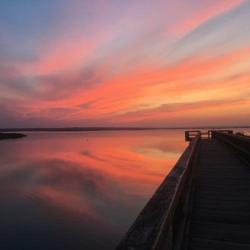 Sunrise on Alachua Lake