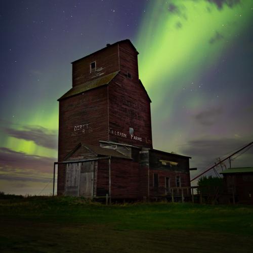Prairie Sentinel