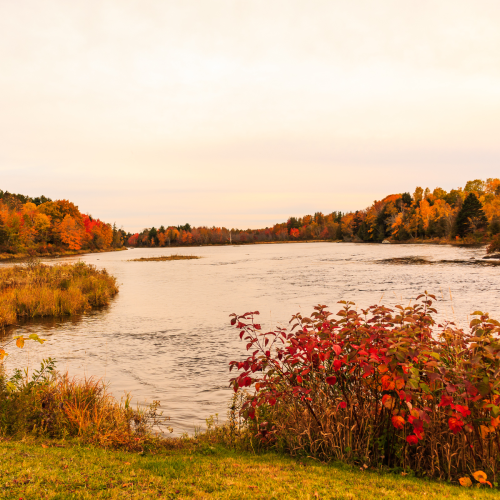 St Croix River in the Fall