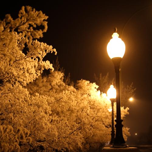 Winter Street Lights