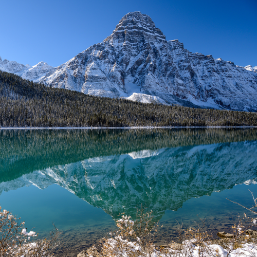 Frosty Waterfowl lakes