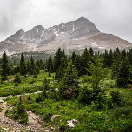 Stormy Hike