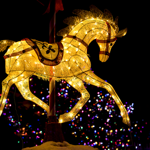 """This is one of the Christmas Lights scene at Upper canada Village """"Alight at Nigt Event"""