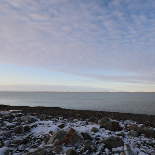 Late evening arctic landscape