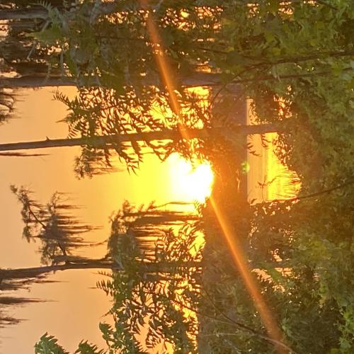 Sunset at Lake Louisa State Park