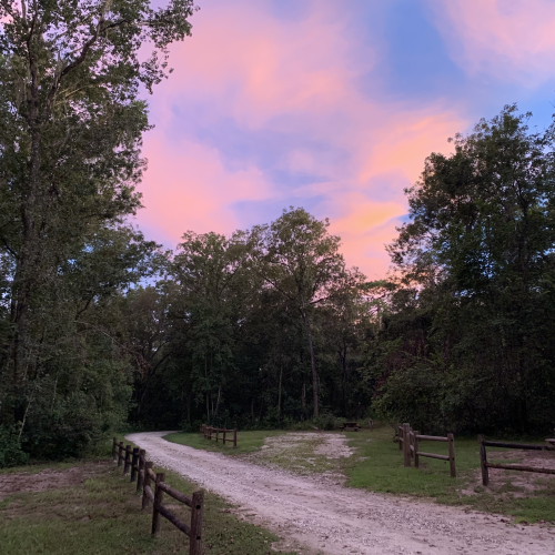 Withlacoochee Fall Sunset