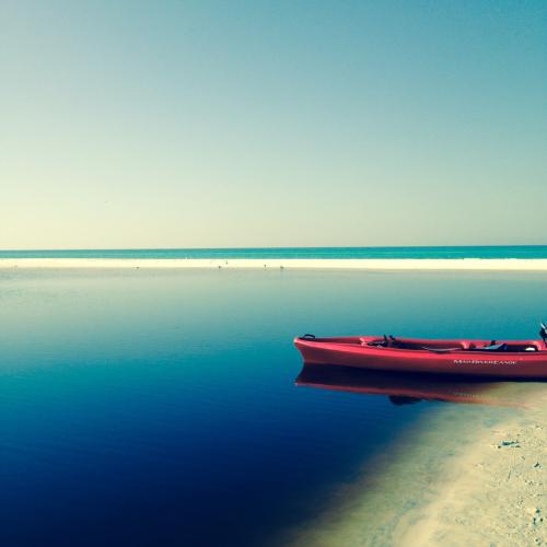 Canoeing Florida's Western Lake
