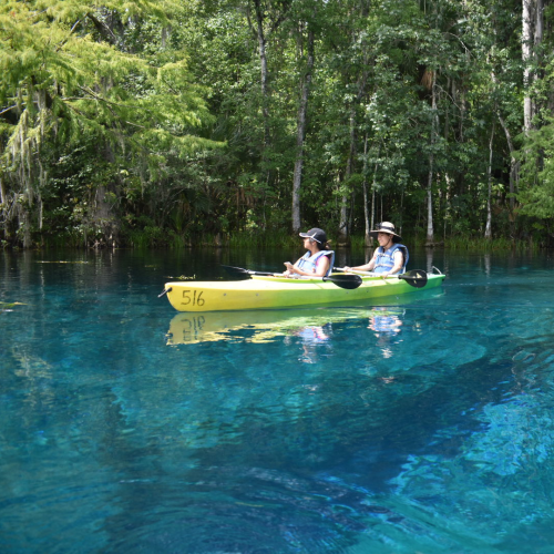 Floating on the Springs