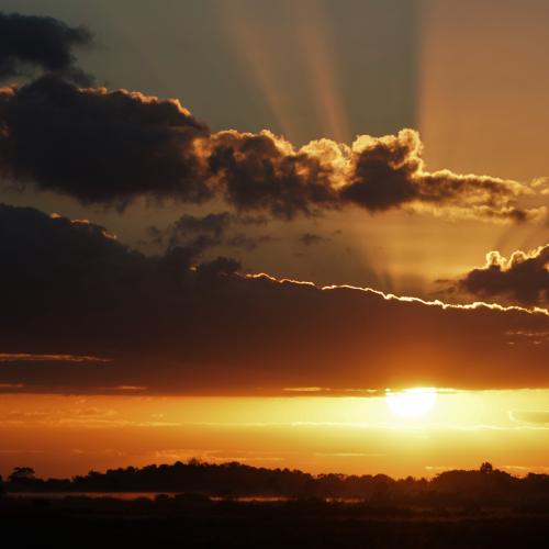 Kissimmee Prairie Sunrise