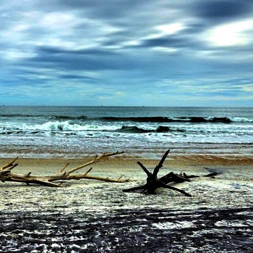 Rugged beach