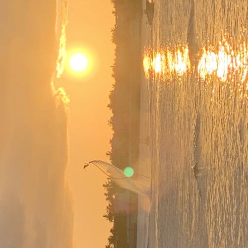 Bahia Honda sunset