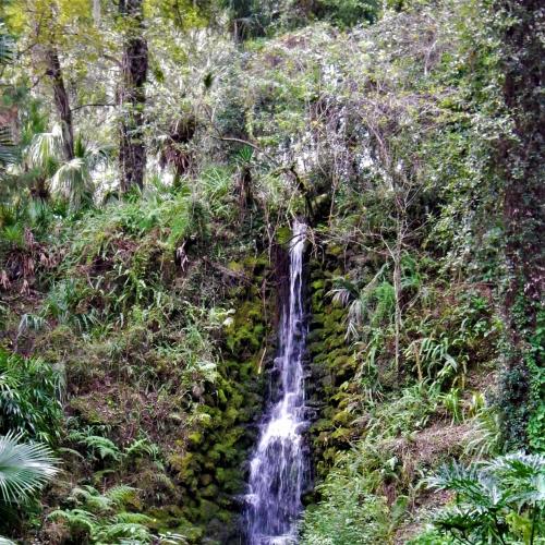 Florida Waterfall