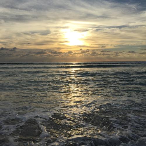 Sunny horizons
