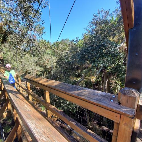 Canopy Walkway Explorer