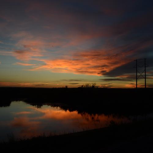 Payne's Prairie Sunset