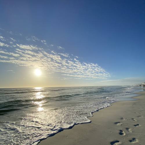 Hazy beach trek